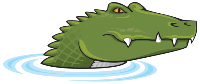 Illustrations of Alligator