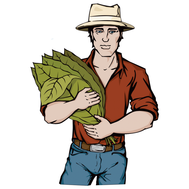 Illustrations of Tobacco Farmer